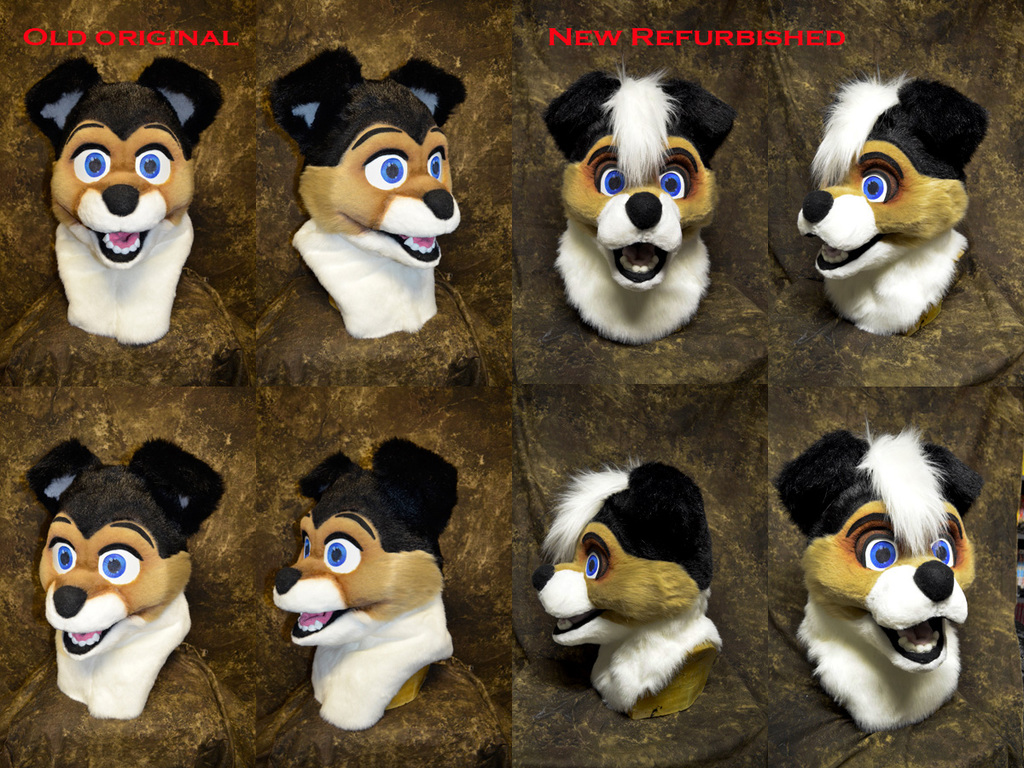 Puppy head repair/refurbish