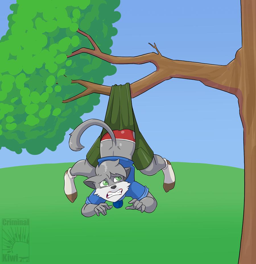 Most recent image: Hanging tree wedgie