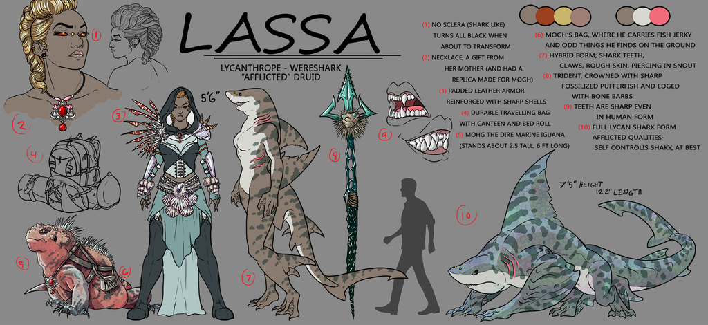 Lassa Model Sheet