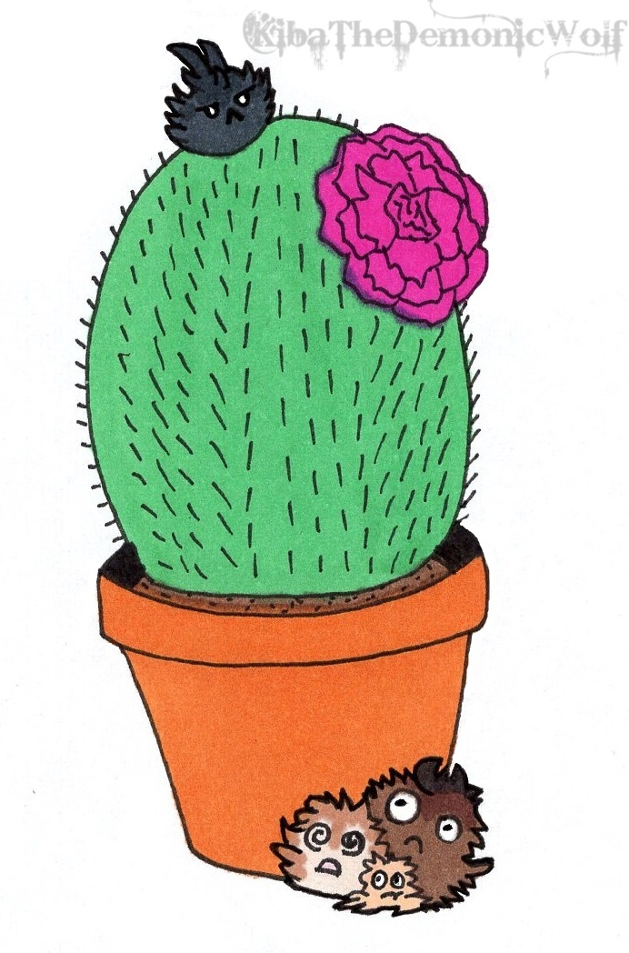 Cactus Rebel