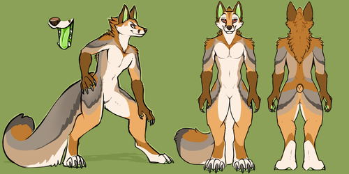 Cape Fox Reference Sheet