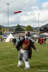 Ironfest 2018: Explosive Husky