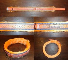 Collar for Tiemera