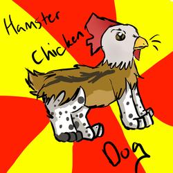 Hamster Chicken Dog