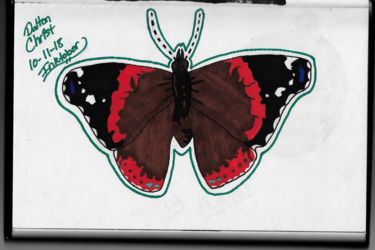 Butterfly (Inktober 2018, Piece 11)