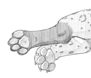 Blackspots's Paws