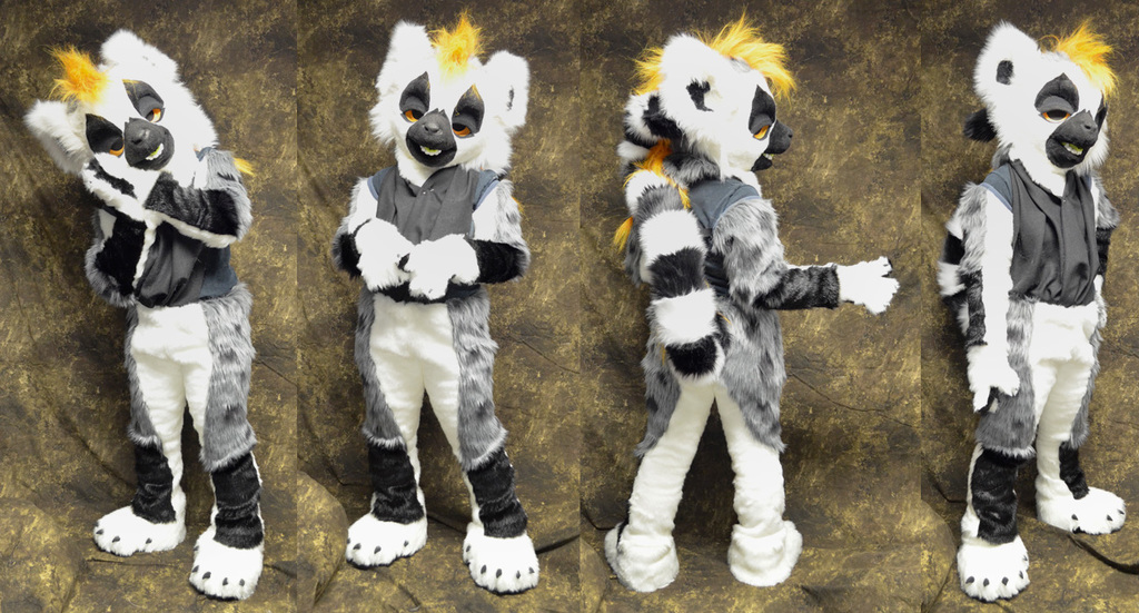 Fog the Ring Tailed Lemur