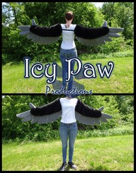 Black/light grey arm wings