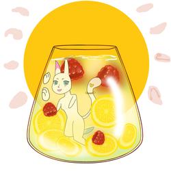 YCH Lemon raspberry Water