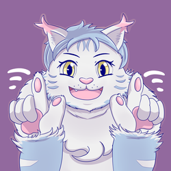 Mewscaper 2018 - Maine Coon Cat - Twitter Avatar
