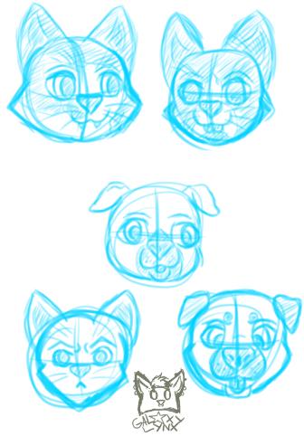 Pet Face Sketches
