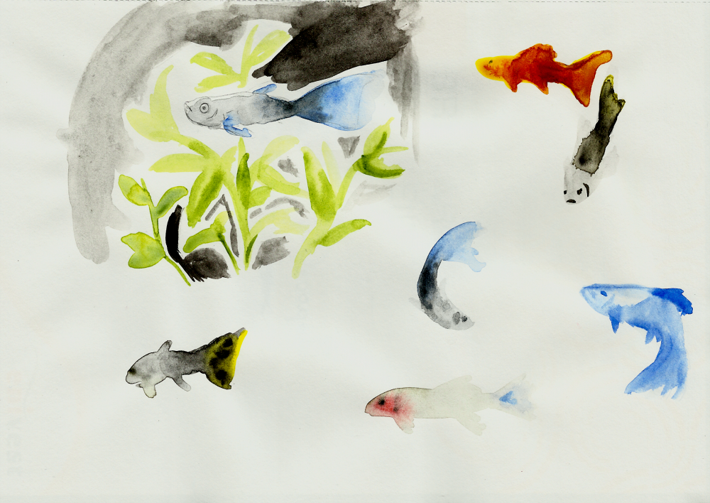 Water Colors - Guppys