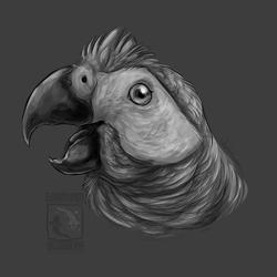 FeatherButt
