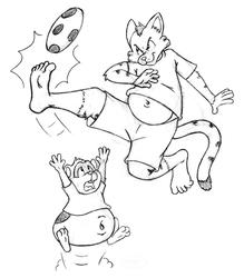 Feline VS Rodent Soccer Match!