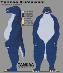 Tankaa Reference - 2013 Version