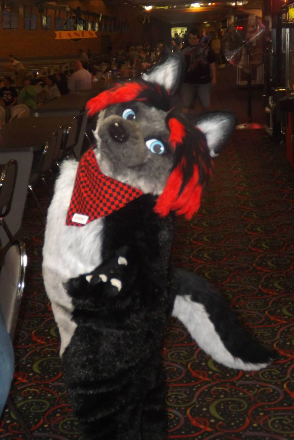 Furry Meet Pictures 14 (Part 4)