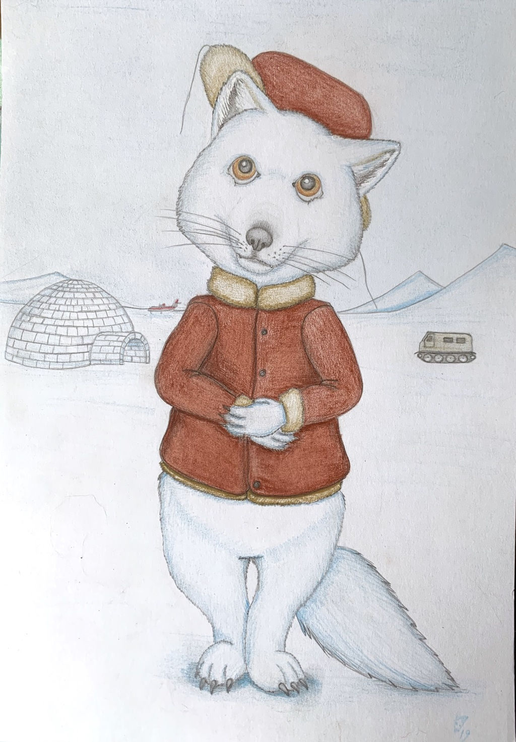 Most recent image: Arctic fox
