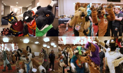 Biggest Little Fur Con 2017 (Convention Video)