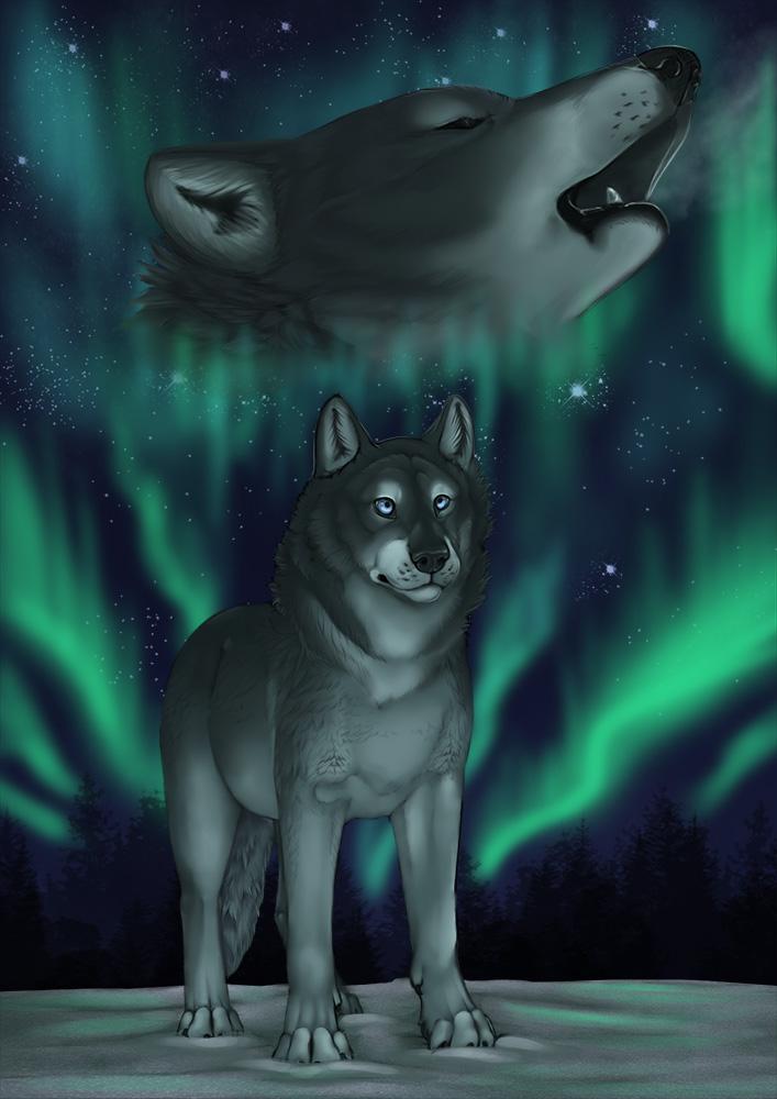 ..:: Northern Lights ::..