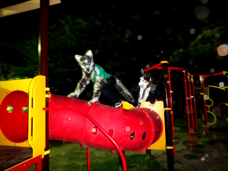 Prowling on the Playground