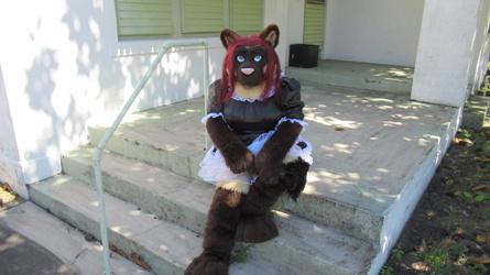 Kitty Maid