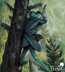Finn, the vagabond