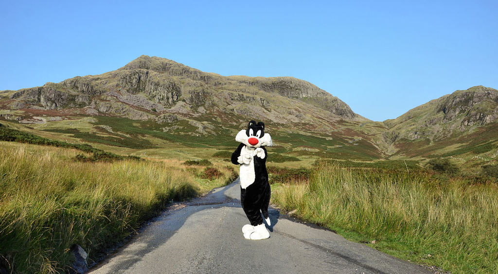 Sylvester in the Hills #2