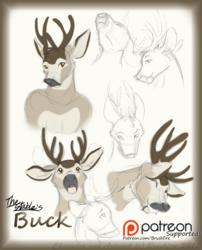 Buck Concept Art