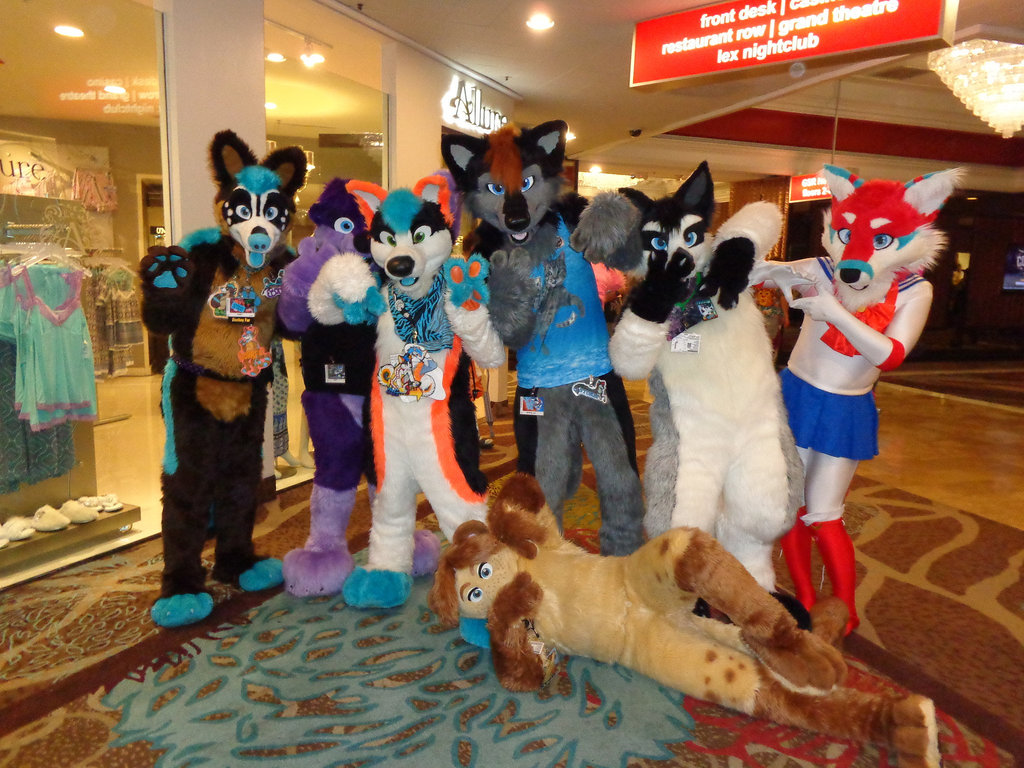 Most recent image: BLFC 2016 # 1