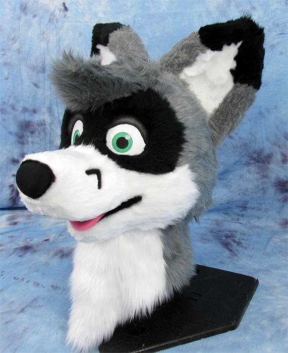 Fox-Coon