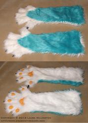 Blue Husky Paws