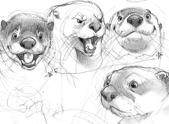 Practice - Otters