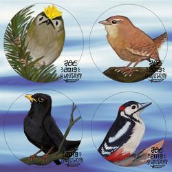 Patreon Birds