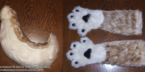 Brown and Cream Husky Paws and Tail
