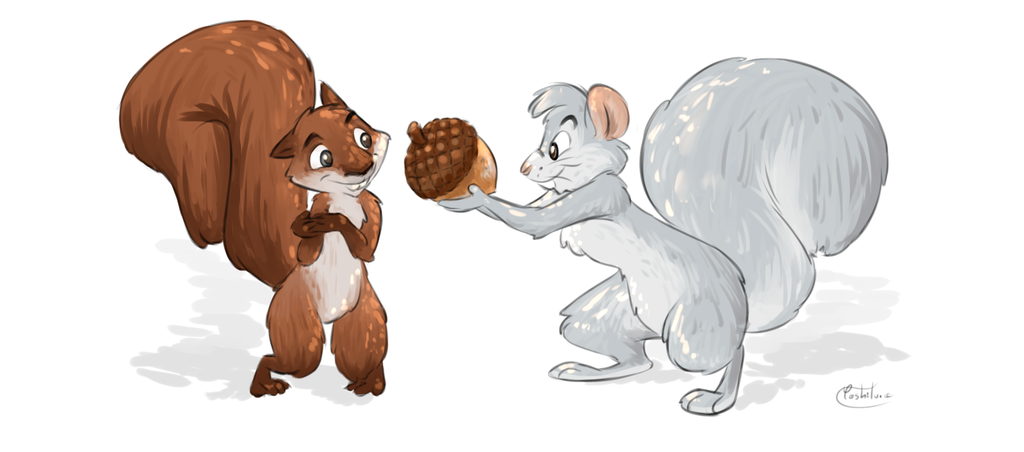 From a squirrel to a squirrel