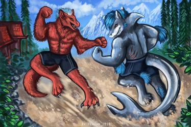 Friendly fight