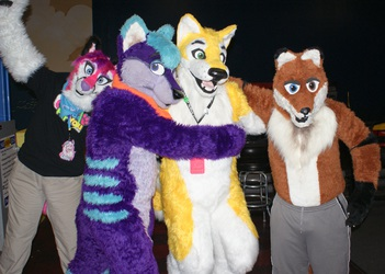 New Years Even Party 2011 -  Group of Furries