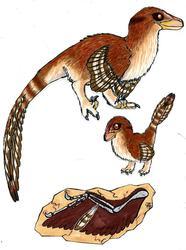 Dinosaur Quill Mascot/Logo