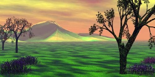 Landscape 004