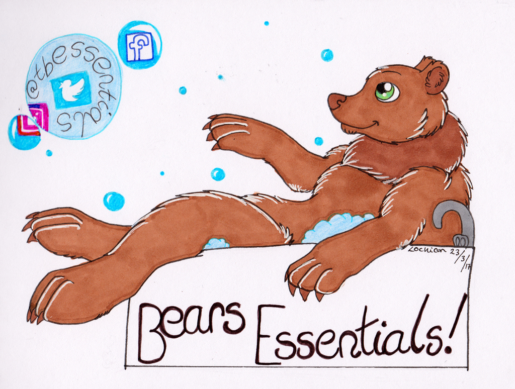 Concept work for The Bears Essentials!
