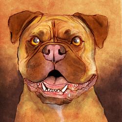 Pet Portrait - Mastiff