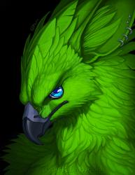 Danger Level: Green