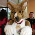 First Time Suiting! EIN!
