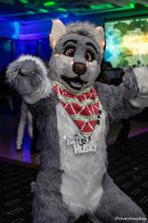 FurDU 2018: Dancing Husky