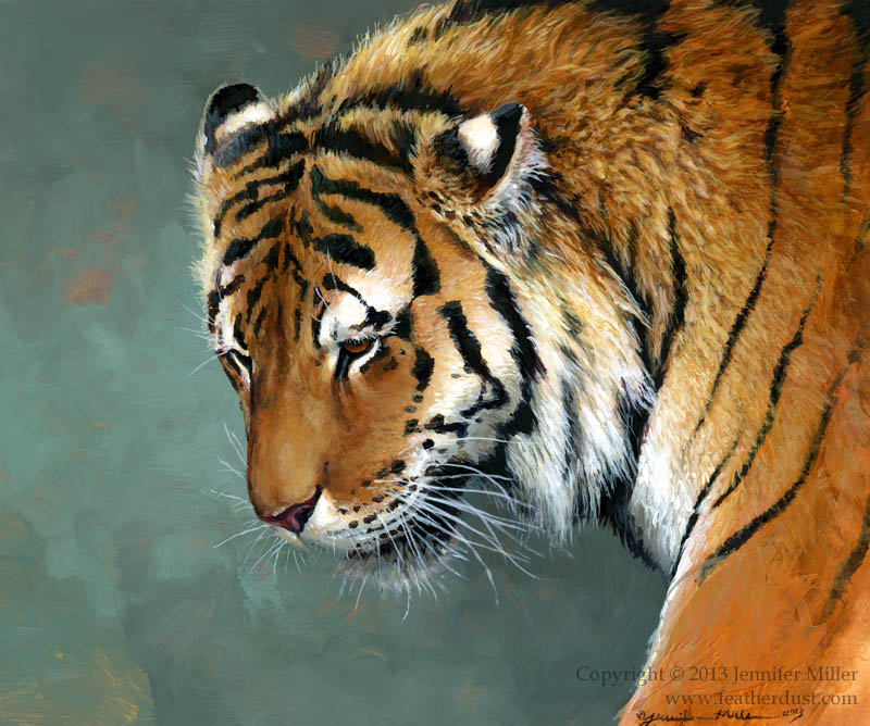 Distant Thought - Amur Tiger