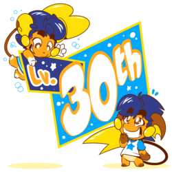 THE 30TH LEVEL