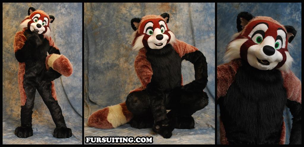 Most recent image: Cinnabar Red Panda - Fursuiting.com