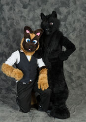 Rogue and Central Photo #1