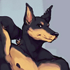 avatar of Junkyarddobie