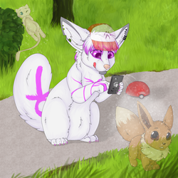 Feel like a pokemon trainer